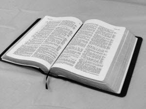 bible-300-225